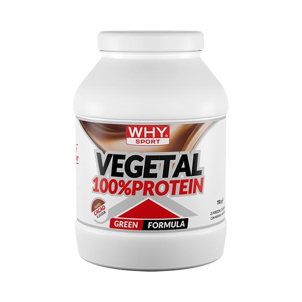 100% vegetal protein - 750 gr